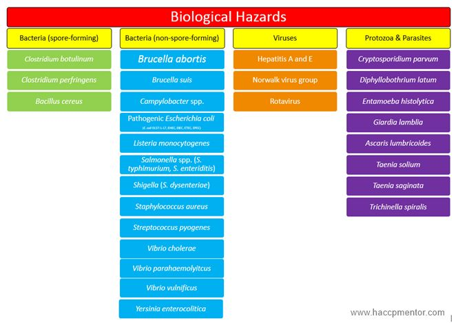"""The foundation of HACCP is based on identifying everything that can go wrong (hazards) with regards to food safety and your products and processes and then putting a strategy in place to stop or reduce (to a safe level) that hazard from happening.  A common question I get asked is """"to what level do I have"""