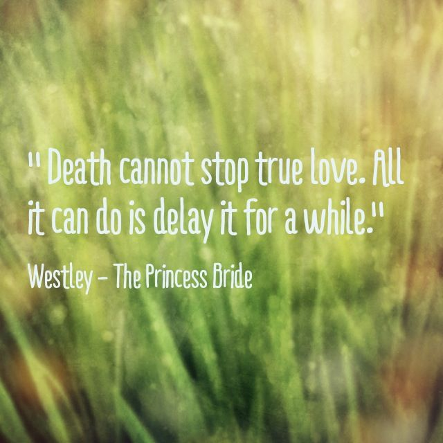 Princess Bride Wedding Quote: Best 25+ Distraction Quotes Ideas On Pinterest