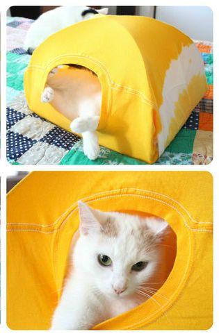Tente pour chat avec un vieux t-shirt
