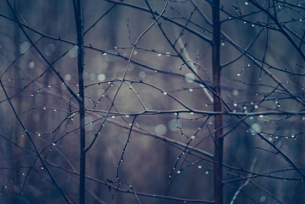 A moment before dark by Nina Lindfors, via Behance