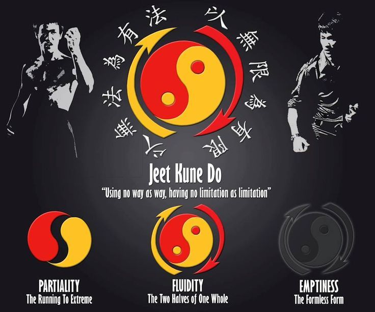 SYMBOL OF YIN - YANG DUALITY..........SOURCE BETTY  CHIN - WU.............JEET KUNE DO......BY BRUCE LEE...........