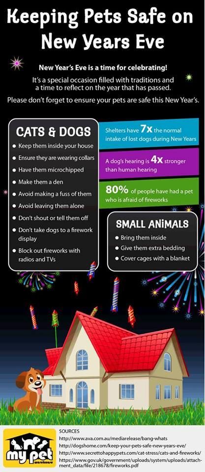 Keep Pets Safe On New Years Eve!