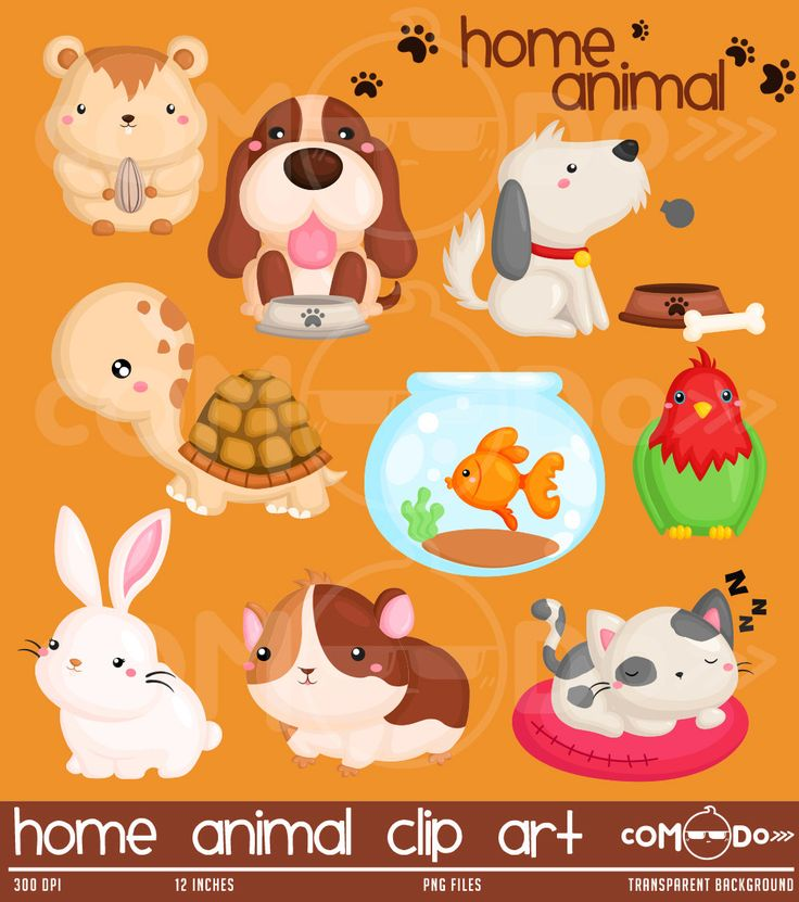 Home Animal Cute Clipart / Pet Digital Clip Art for by comodo777
