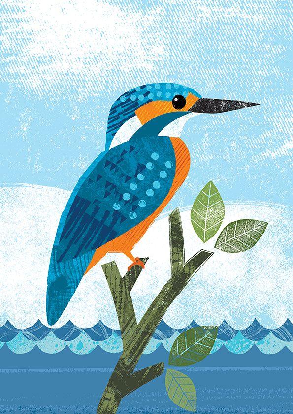 CCKingfisher