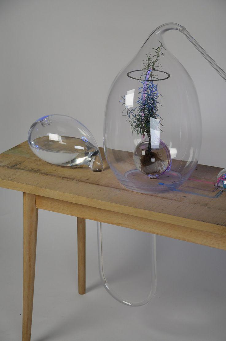 Vegetalize Air Culture Lab by Sarah Daher for Dutch Design Week 2015