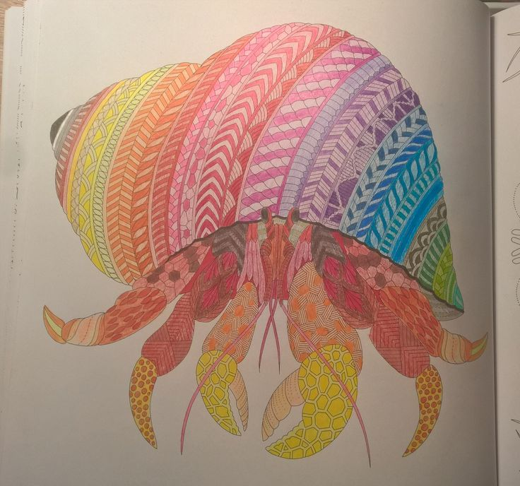 Millie Marotta: Curious Creatures - Hermit Crab  #milliemarotta #CuriousCreatures #milliemarottabooks #colouringbooks #colouringforadults #adultcolouring #adultcoloring #stressfree #relaxing #blending