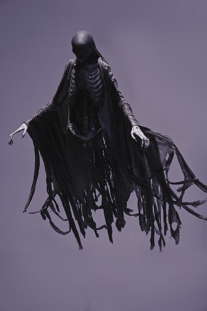 Dementor by R V S Photography, via Flickr
