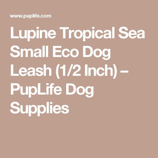 Lupine Tropical Sea Small Eco Dog Leash (1/2 Inch) – PupLife Dog Supplies