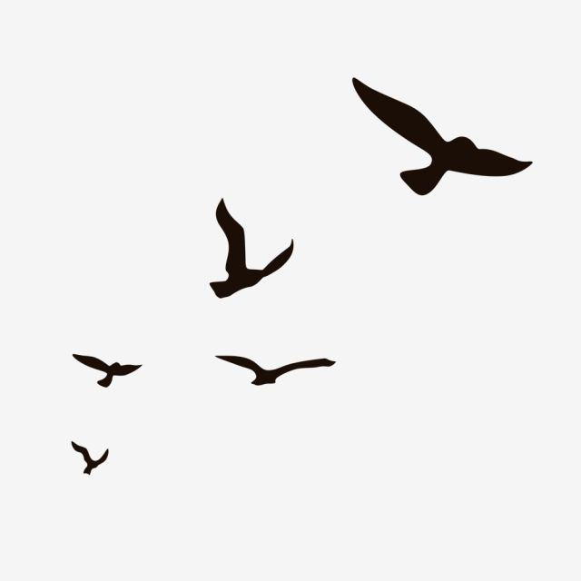 Aerial Fly Little Bird Silhouette A Flock Of Birds Flying Seagull Wild Goose Png Transparent Clipart Image And Psd File For Free Download Flying Bird Silhouette Bird Silhouette Birds Flying
