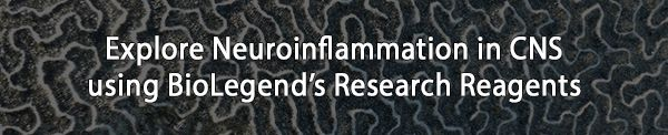 Neuroinflammation is a fundamental symptom of many CNS diseases and neurodegenerative disorders. Learn more about the neuroscience products we offer to aid in neuroinflammation research with our latest eblast: https://www.biolegend.com/NewsLegend/031517neuroinflammation/index.htm