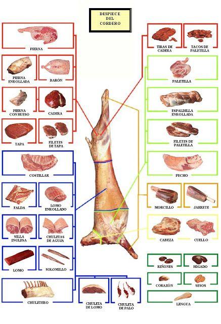 GastroNomia. MateriasPrimas: Tipo de cortes: Despiece EL CORDERO