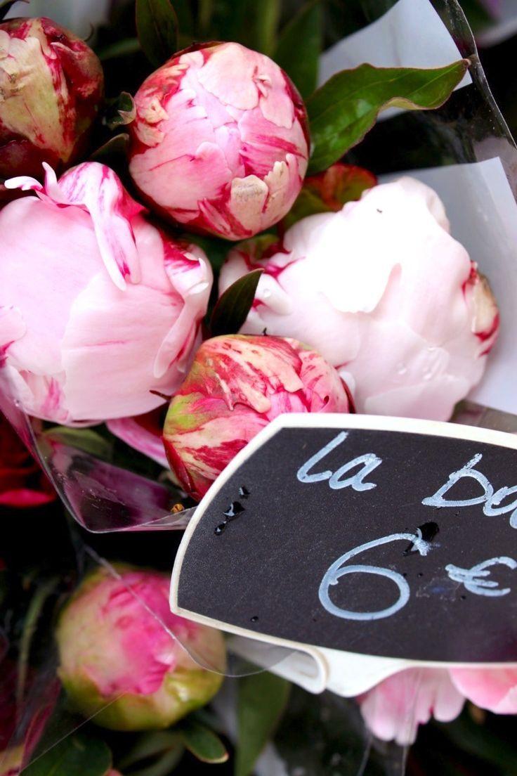 * ༺✿ ☾♡ ♥ ♫ La-la-la Bonne vie ♪ ♥❀ ♢♦ ♡ ❊ ** Have a Nice Day! ** ❊ ღ‿ ❀♥ ~ Sun 31st May 2015 ~ ❤♡༻ ☆༺❀ .•` ✿⊱ ♡༻ ღ☀ᴀ ρᴇᴀcᴇғυʟ ρᴀʀᴀᴅısᴇ¸.•` ✿⊱╮ ♡ ❊ **