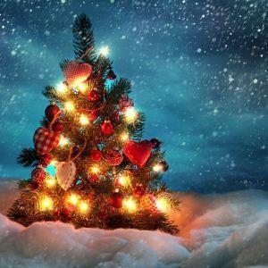 Новый год 2017: как правильно нарядить елку