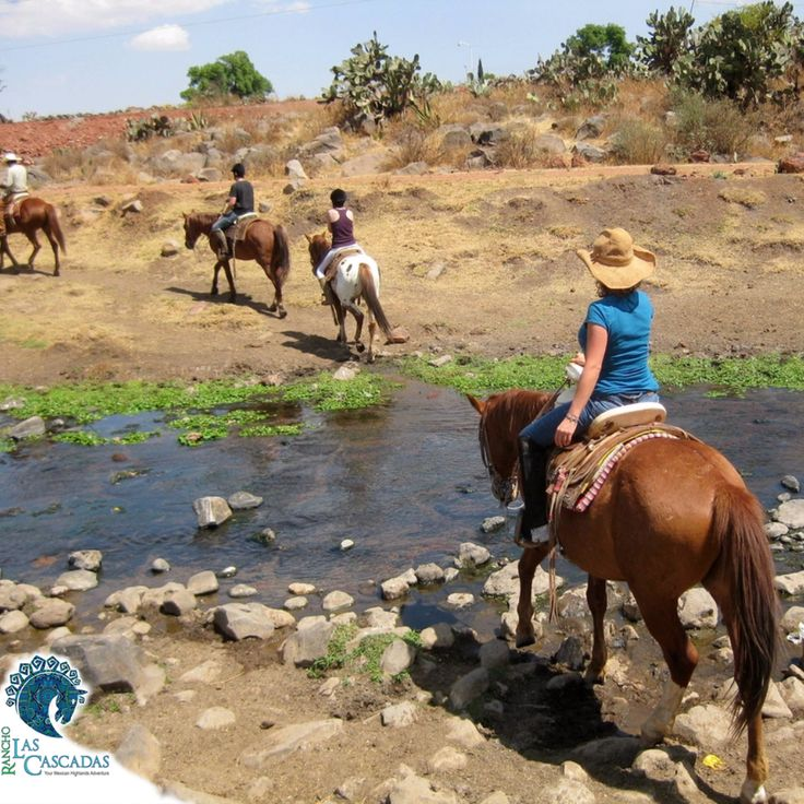 Another great day at the rancho!  Check out all of our great riding available here...
