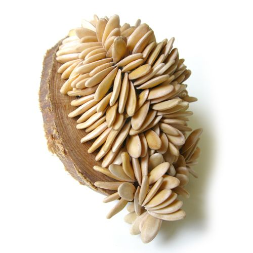 A Constant Grinding, brooch:  Galia melon seeds, rowan wood, aluminium, silver, steel, Karin Roy Andersson 2011