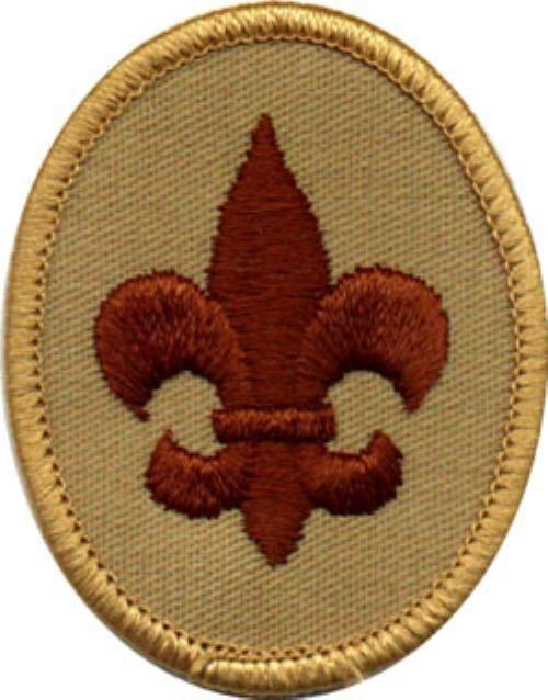 Image result for boy scout badges