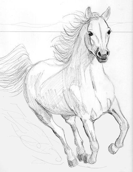 Eine Bleistiftzeichnung eines laufenden Pferds. Ich hoffe es gefällt euch. • …