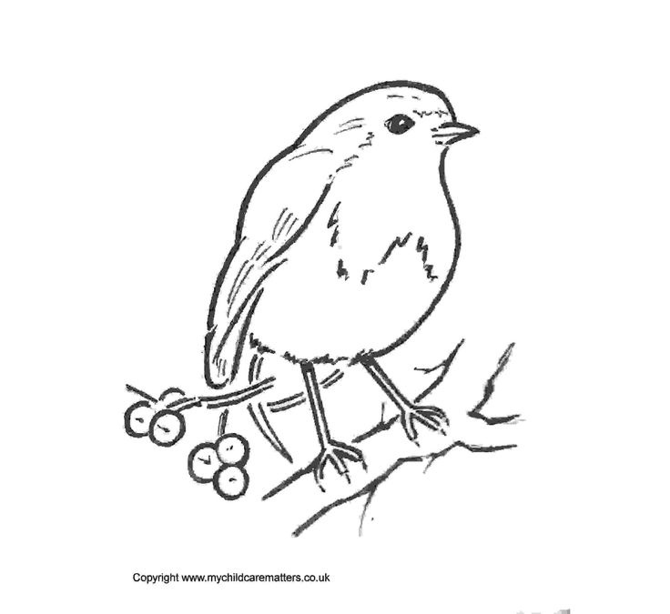 Line Drawing Robin : Best rose tattoos images on pinterest