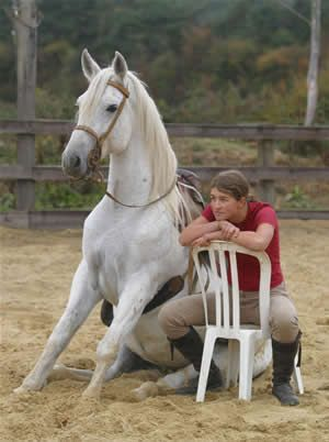 its moments like this that are the core 2 my love of horses... not the fancy shows or prizes!