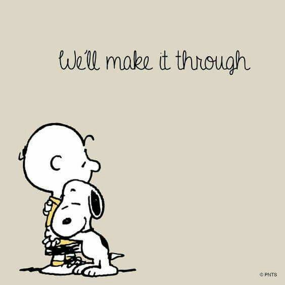 Cartoon Quotes 103 Best Peanuts Gang Images On Pinterest  Charlie Brown Peanuts .
