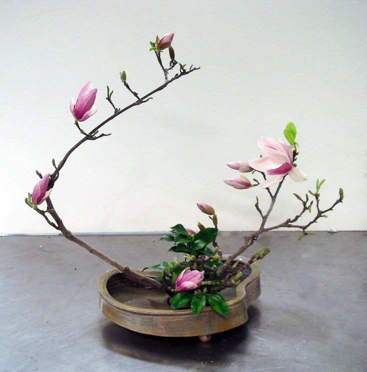 1000 images about ikebana on pinterest japanese flowers for Japanese flower arranging crossword clue
