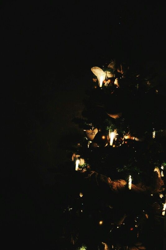 My special Christmas tree :)