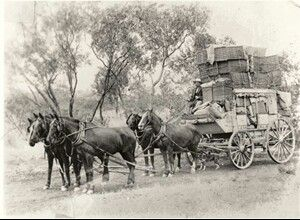 Cobb and Co bring the Christmas Mail to Cloncurry.A♥W