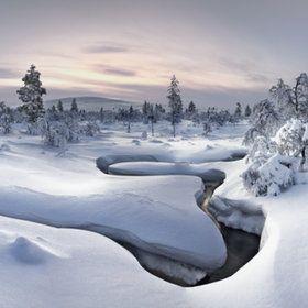 Lapland - Kiilopää http://www.naturescanner.nl/lapland