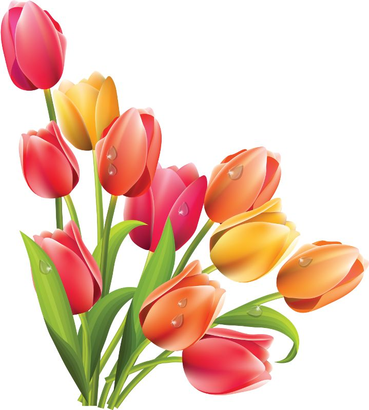 23 best clip artspring flowers images on pinterest spring 7g art flowersspring mightylinksfo
