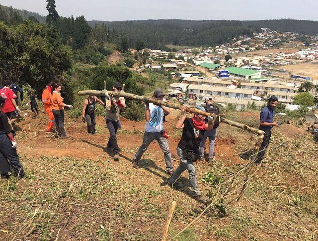 Escuela Protección Civil.: La Gestión de los Voluntarios en una Catastrofe.