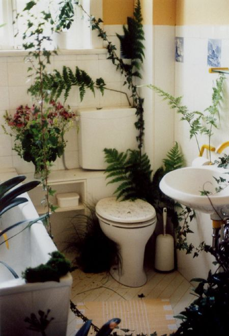 Best Bathroom Plants Images On Pinterest Bathroom Plants