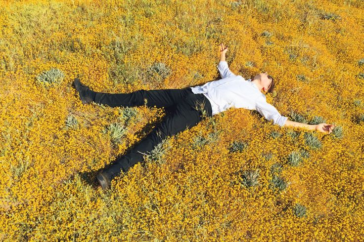 he's alive. don't fret.  Antelope Valley Poppy Reserve 3.21.15