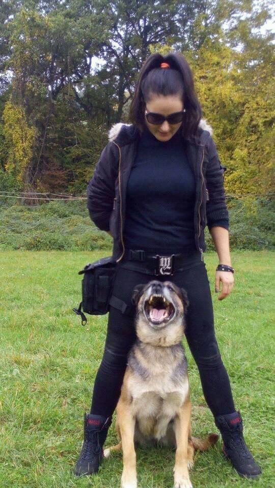 Germany Shepherd