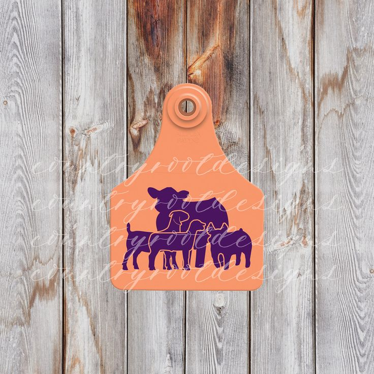 Livestock Decal, Cow Ear Tag Keychain, Customizable Decal, Livestock Judging, Stock Show Life, Pig, Goat, Vinyl Decal, Steer Decal, FFA by countryrootdesigns on Etsy https://www.etsy.com/listing/509371842/livestock-decal-cow-ear-tag-keychain