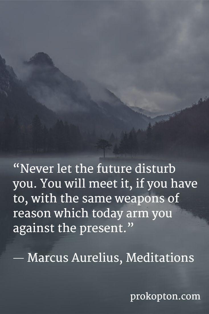 """""""Never let the future disturb you ....""""  ― Marcus Aurelius, Meditations"""