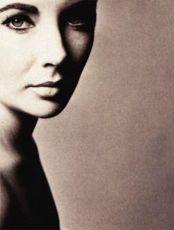 : Elizabeth Taylors Th, Amazing Photo, Classic Beautiful, Beautiful Women, Classic Hollywood, Beautiful Faces, Liz Taylors, Icons Photo, Elizabeth Tylor