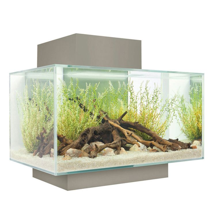 Fluval edge aquarium silver aquariums pinterest for Fluval fish tank