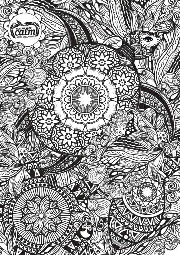 Free Colouring Page PagesColoring BooksWater AnimalsDoodle