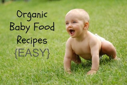Organic and Easy To Make Baby Food Recipes