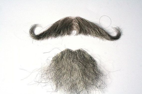 I love mustaches, but this looks like they glued together some spare pubes.