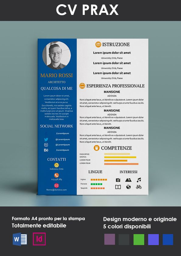 Curriculum Vitae Modello Prax Modelli Di Curriculum Curriculum Vitae Modello Curriculum Lettera Di Presentazione
