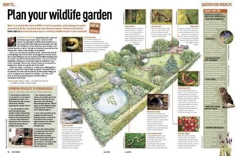 Plan your wildlife garden with this helpful insights and tips from DiscoverWildlife.com