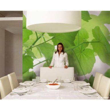 Feng Shui Health 299 best feng shui images on pinterest | feng shui, feng shui tips