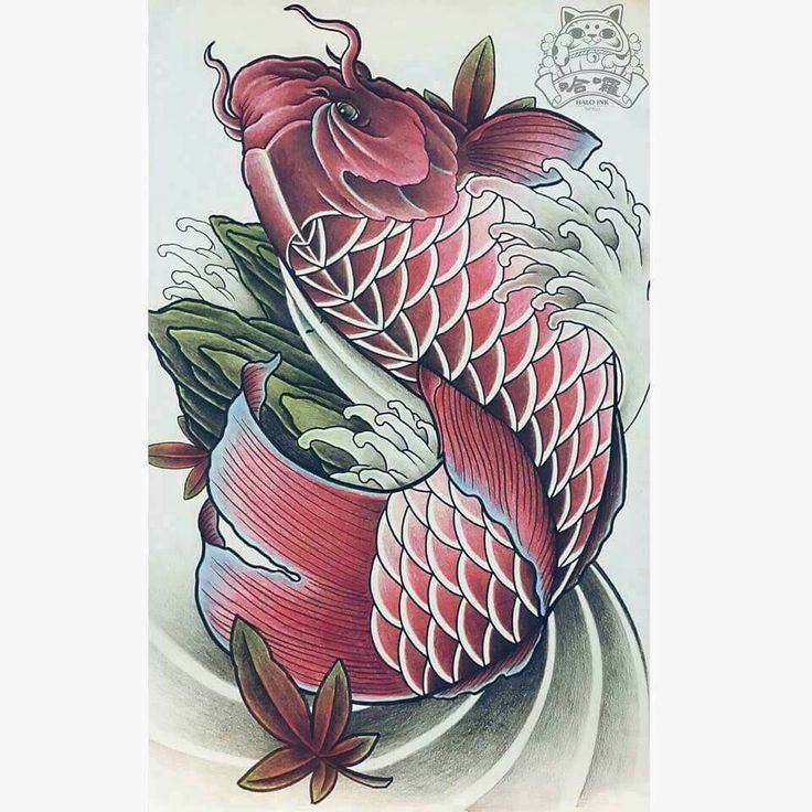 Best 25 dragon koi fish ideas on pinterest koi dragon for Koi pond tattoo