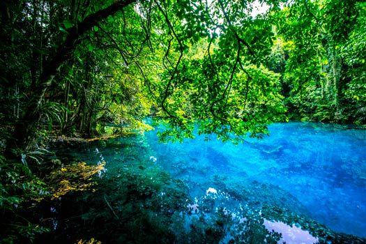 Santo's beautiful Blue Hole, Vanuatu. Photo by David Kirkland/Vanuatu Tourism Office