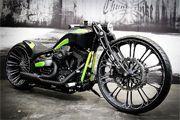 Harley-Davidson Softail Gallery – #Gallery #harleydavidson #Softail