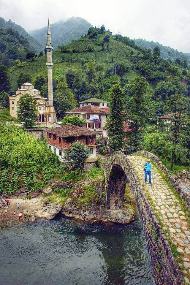 Rize, Turkey, green nature, green landscape, stone bridge, river