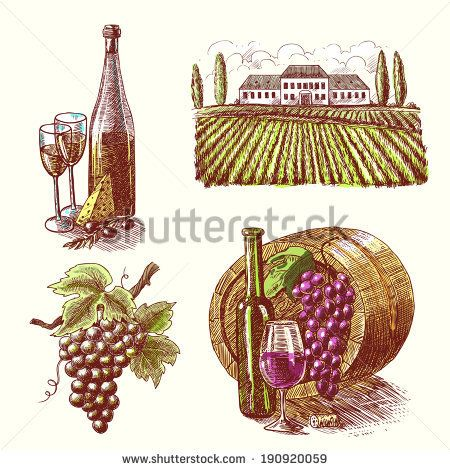 vineyard Illustration inspiration