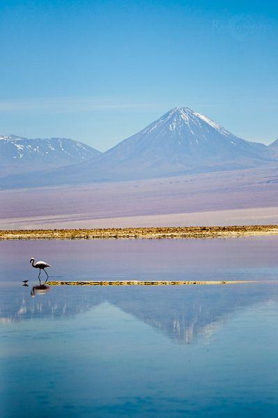 altiplano postcard by cluster fotos, via Flickr