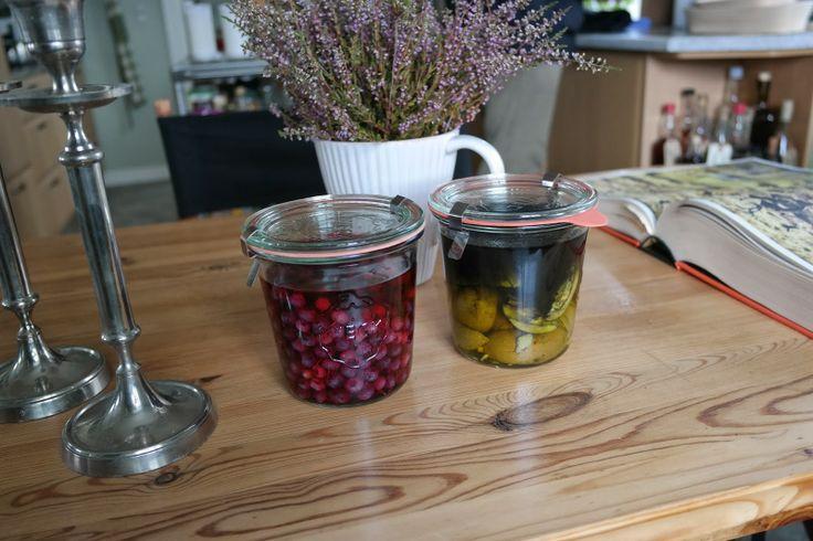 HAVEHJERNEN - Snaps på blåbær og snaps på valnød. Blueberry and valnut schnaps